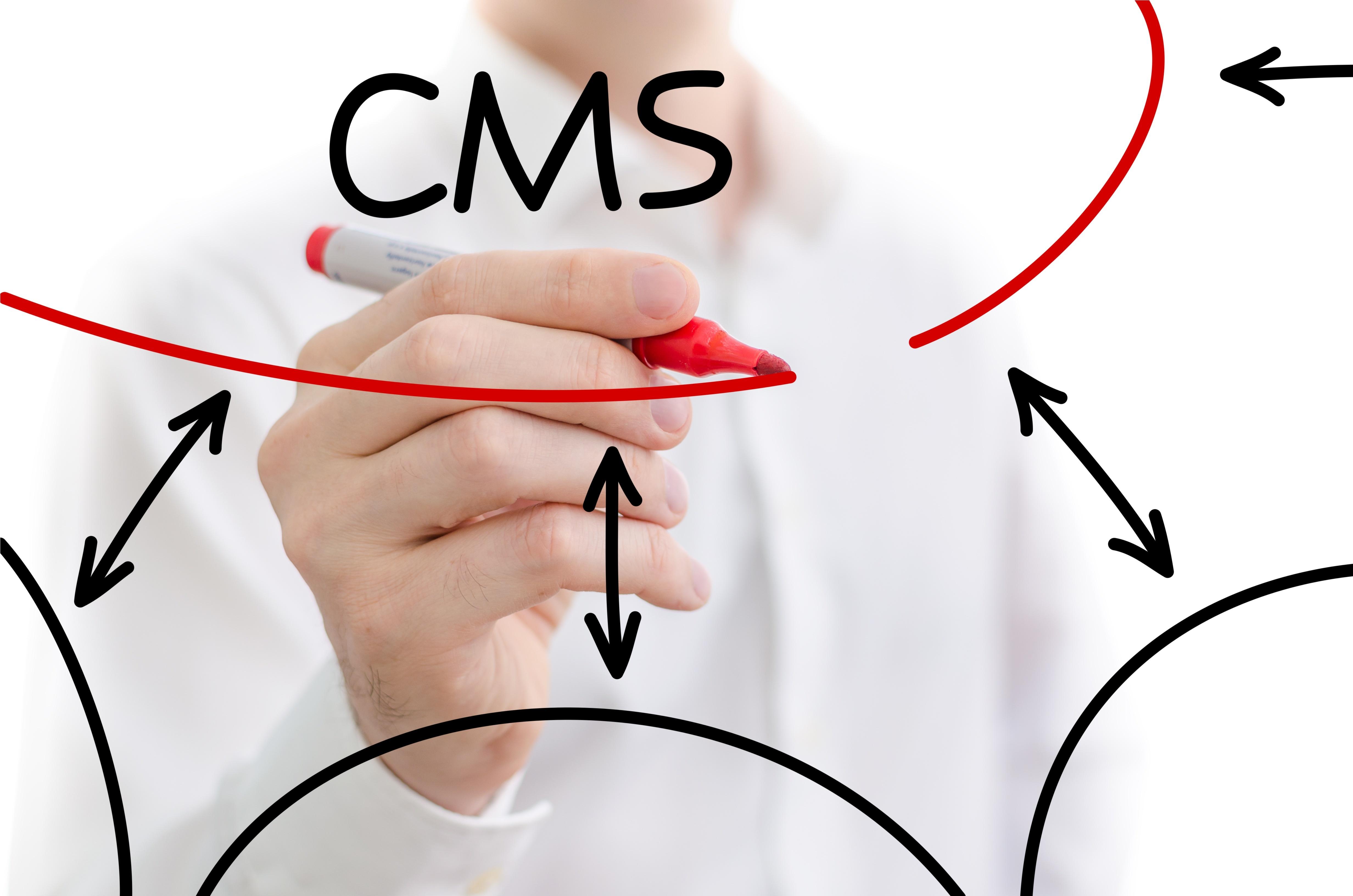 CMSの種類と特徴、おすすめCMSを解説